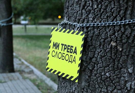 Герила акција: скопските дрвја во синџири