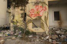 Лековитите цвеќиња на Либан