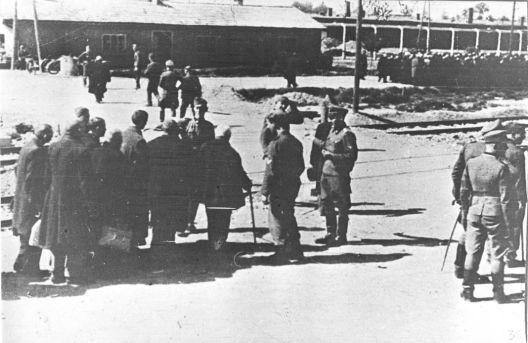 Меѓународен ден на сеќавање на Холокаустот: Аушвиц низ слики