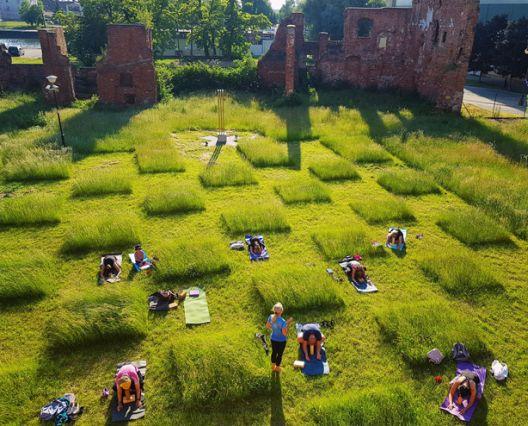 Градините во време на социјална дистанца