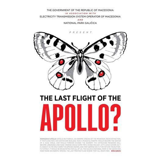 Акција за заштита на Аполоновата пеперутка, загрозен вид од Галичица