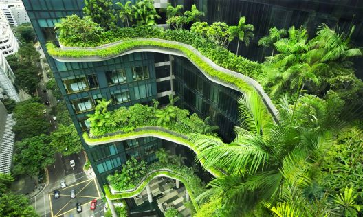 Вертикални паркови и градини во градовите на иднината
