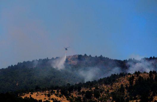 Пожарите досега уништиле 8.803 хектари шумска површина во земјава