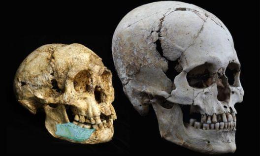 Откриени нови претци на модерниот човек, еволуцијата станува сè покомплицирана