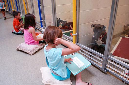 Деца практикуваат вештини за читање за да ги опуштат повлечените и исплашени кучиња