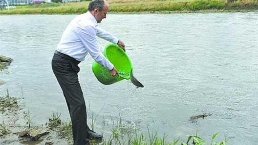 Коце Трајановски фатен на дело како фрла мртви риби во Вардар!