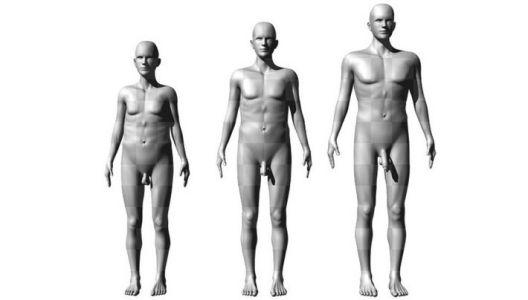 Колку на жените им е важна големината на пенисот?