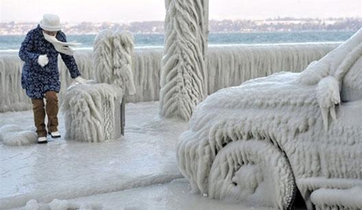 Студен бран од истокот