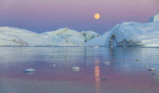 Господари на Арктикот