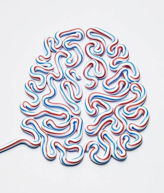 Кој управува со вашиот мозок?