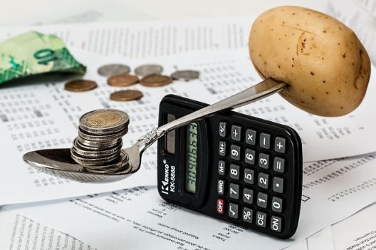 АНАЛИЗА: Скоро 74% од месечните трошоци – за храна и за сметки!