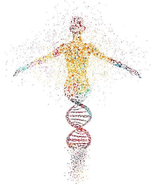 Читањето на геномот: Пат кон дискриминација?