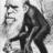 darwin_ape.png