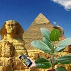 Селфи на Хорхе од работната посета на Египет