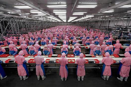 Прекарни работници