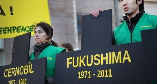 Фукушима, година прва