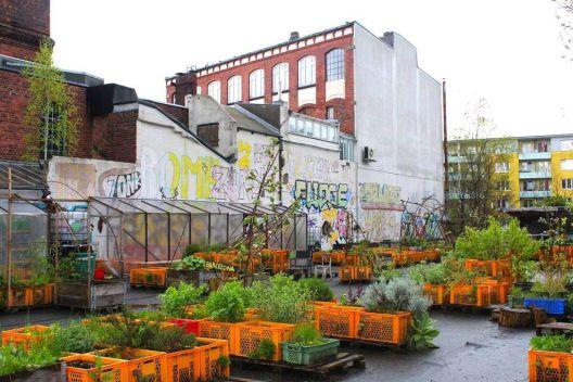 Работилница за садење и одржување урбани градини