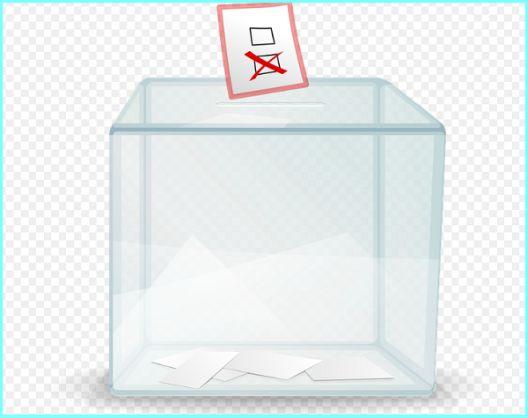 Не е намален цензусот за локален референдум