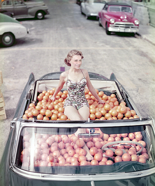 Foto montazhi od okno - Page 6 Grule-portokaloviot