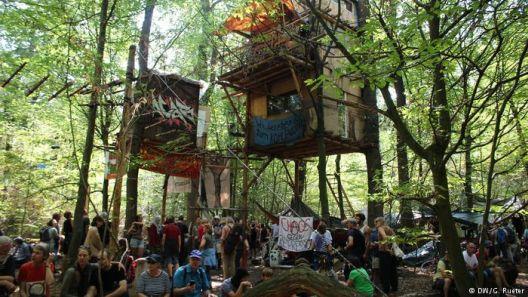 Ескалација на борбата за шумата  Хамбах во Германија