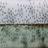 АнимаMунди го пофали град Скопје за хуманиот однос кон комарците