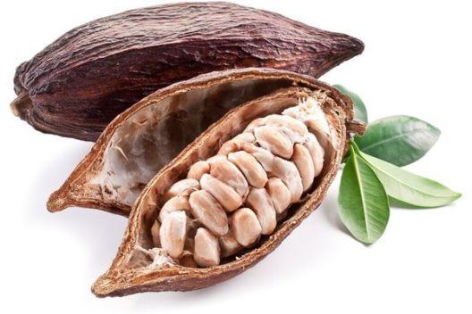 Непознатата историја на какаото