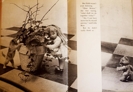 Необичната книжевна хероина,Осамената кукла