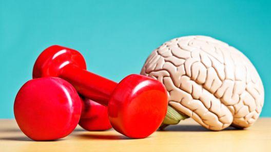 Билдајте го умот, а не мускулите