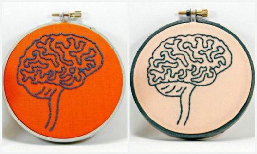 Машкиот и женскиот мозок: Невронаука и невросексизам
