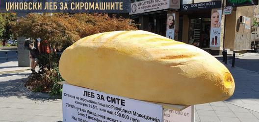 Џиновски леб за сиромашните и Поддршка за птиците во Скопје