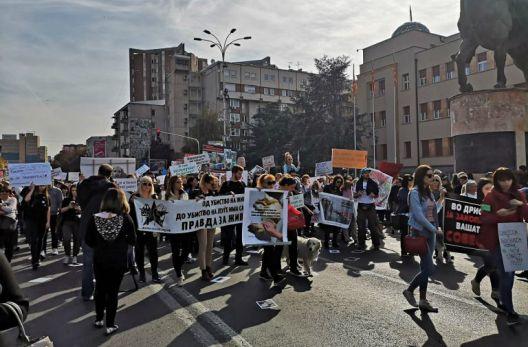 Протест против нехуманиот однос кон бездомните животни