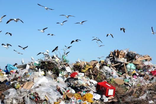 Пластичен отпад: што може да направите?