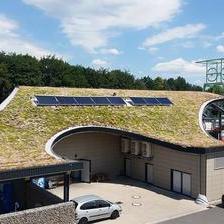 Трева на покривот: заштита на природата и штедење енергија