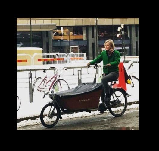 Шведската министерка за животна средина секојдневно на точак