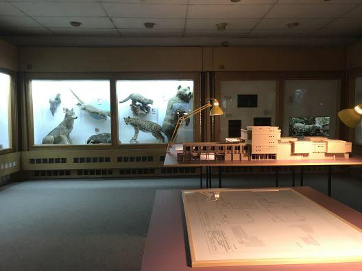 """""""Загрозени видови""""- архитектонска изложба"""